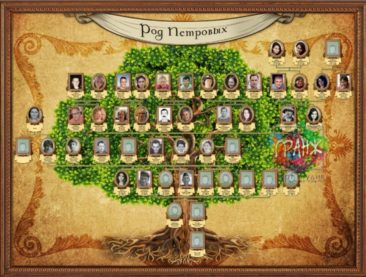 Заказать генеалогическое древо семьи